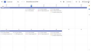 Vista de dos semanas en Google Calendar